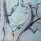 up in the beech branches 5 charcoal and mixed media